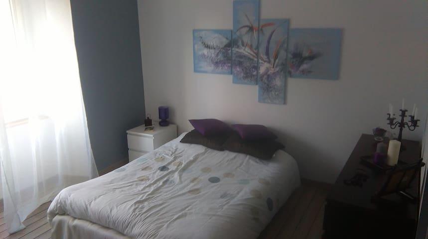 Chambre d'hôtes proche Du Mans - Noyen-sur-Sarthe - เกสต์เฮาส์