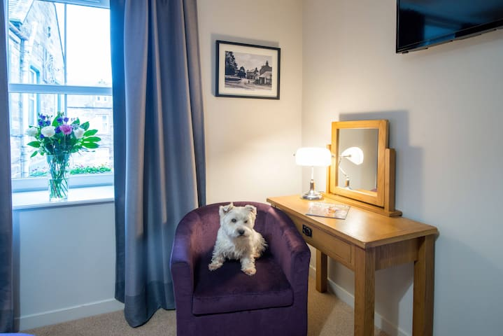 Superking room - all rooms dog friendly