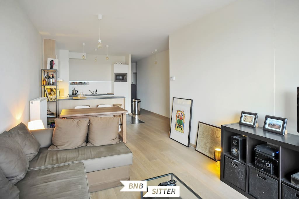 Enjoy. The apartment is yours. The sofa can easily be turned into a double bed.