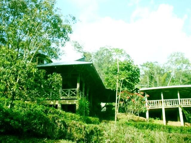 Albergue Montaña Verde - Rivas - House