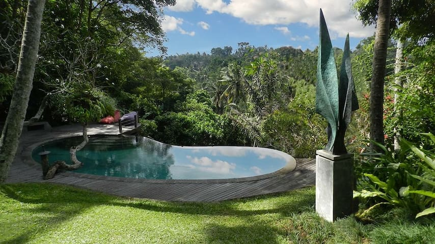 Jungle view apartment in Ubud/3 BR