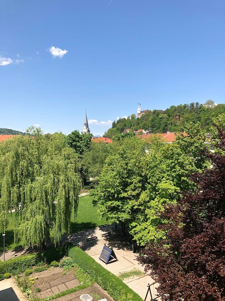 Castle view studio