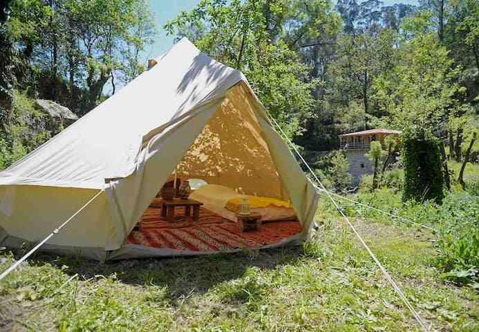 Bell tent surrounded by nature - Tent