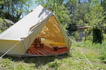 Bell tent surrounded by nature - Zelt