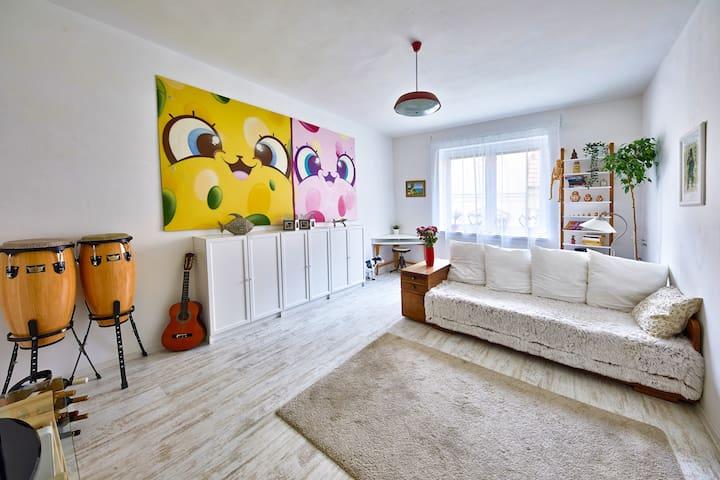 Pikachu's Gallery - historical old town Bratislava