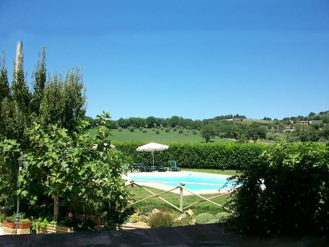 Fiordaliso: apartment superior in villa with pool - Ponte Felcino - Apartment