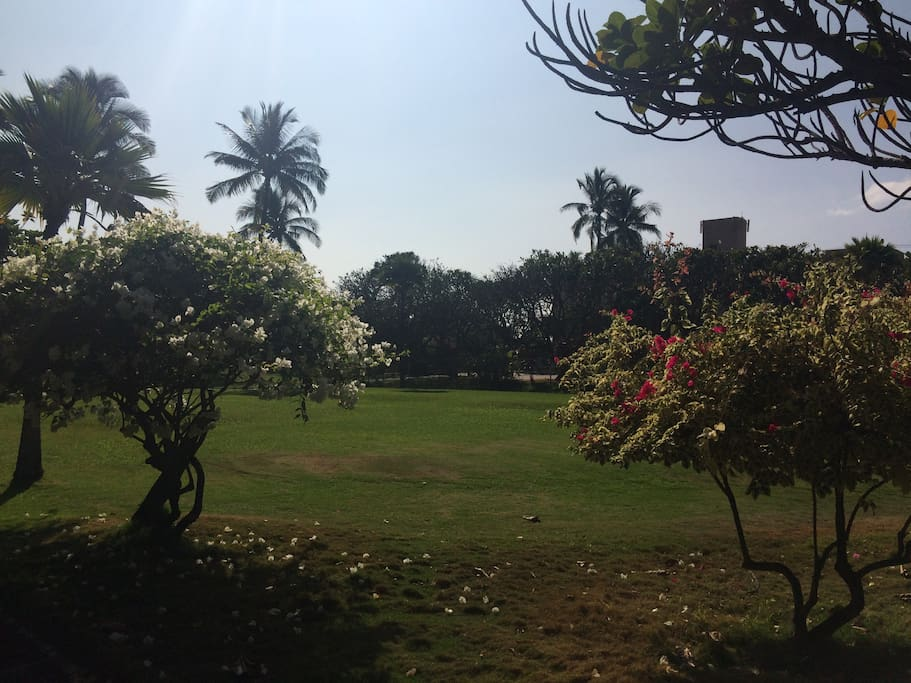 Well maintained and manicured grounds.