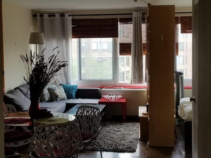 Furnished Studio Apartment - Heart of Dupont