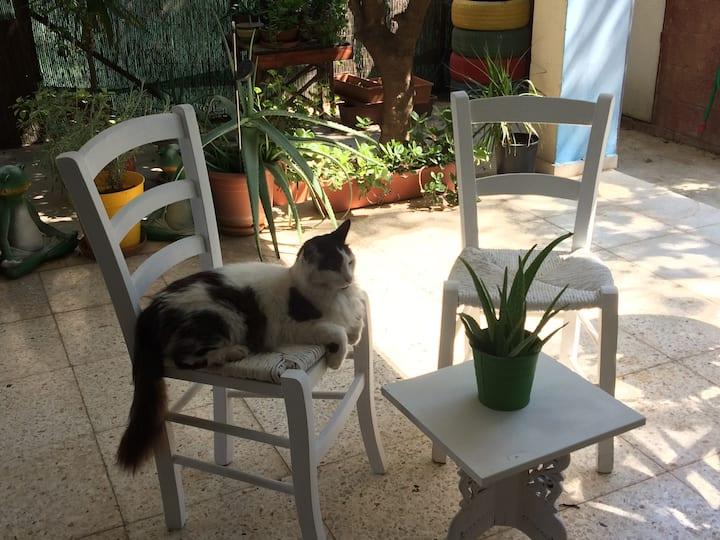 Private room in Aglantzia Nicosia
