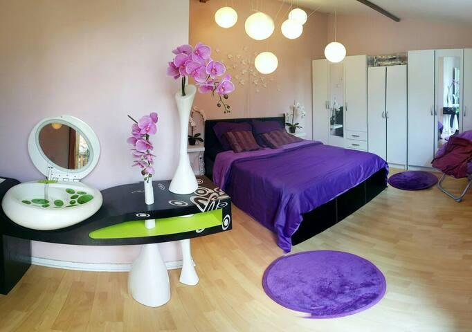 Chambre 20 mn Paris, 30 mn Disney - Chelles - House