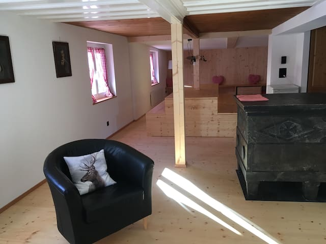 Wohn- und Esszimmer mit Specksteinofen