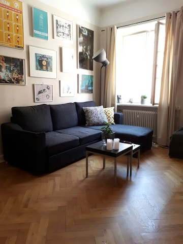 Cozy apartment in central of Södermalm / Sofo