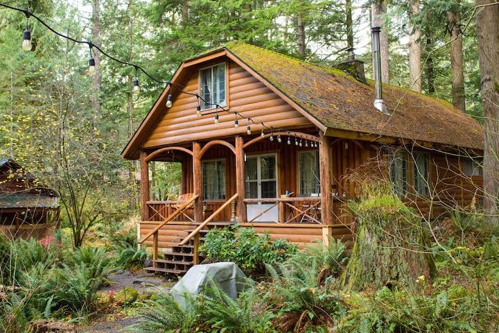 Log Cabin [NEW SAUNA]-Fireplace, Wifi, Dogs, RV Ok