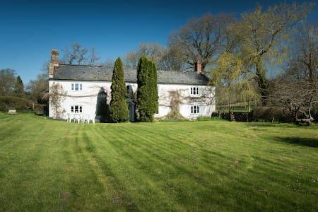 Homely cottage near Lyme regis