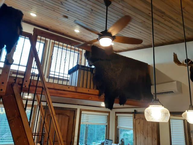 loft w buffalo hide