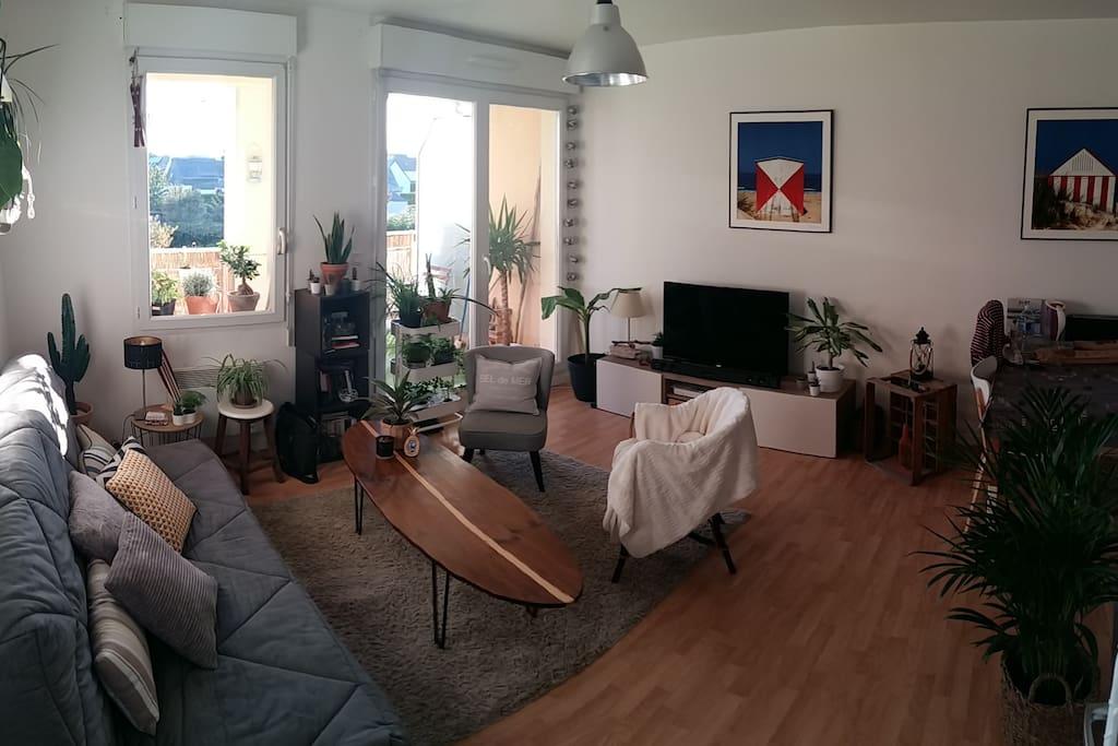 Salon TV + Wifi