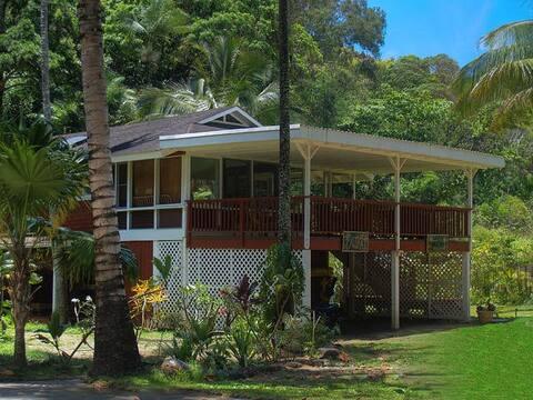 Hale Aloha - Ocean View Home 120 Steps from Beach