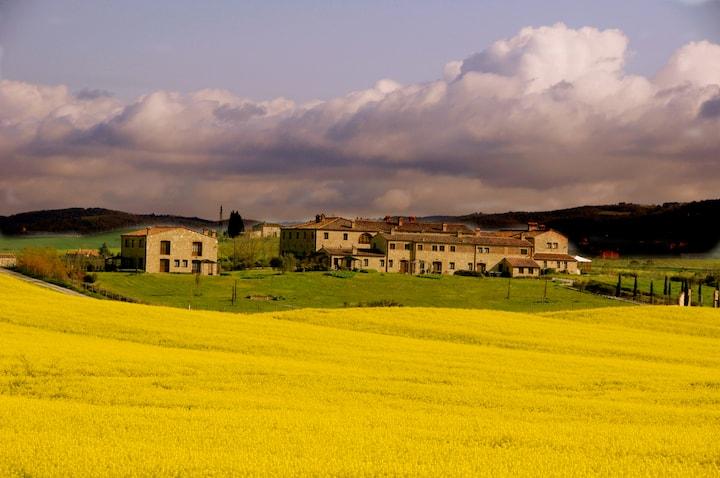 Appartamento a Borgo Beccanella (1P)