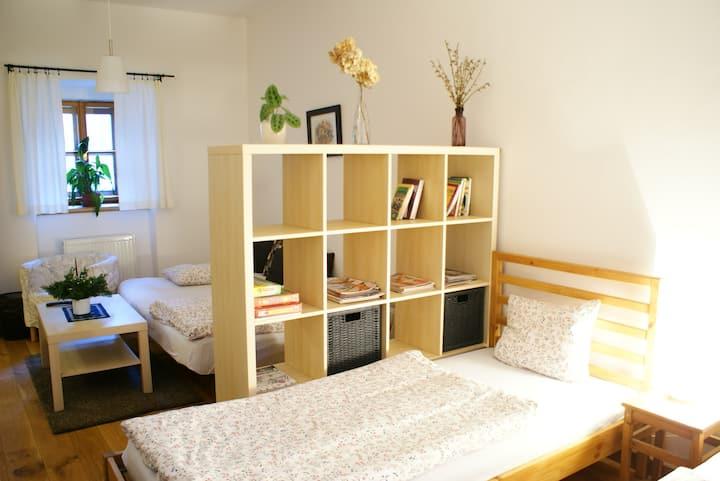 Apartmán se dvěma ložnicemi a kuchyní pro 6-8 osob
