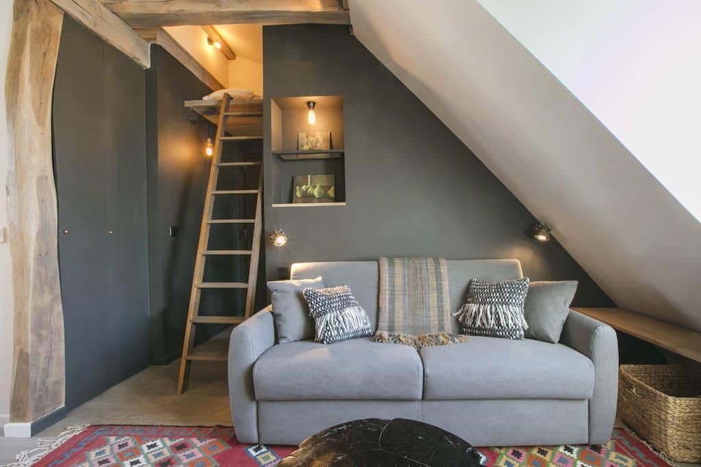 salon, canapé lit, mezzanine pour 1 personne