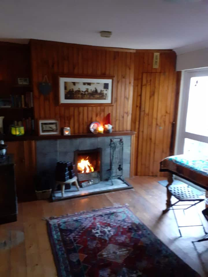 Wood-cabin style bedroom - 10 min walk from city