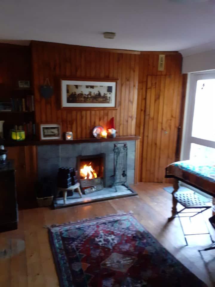 Wood-cabin style bedroom - 10 min walk from city