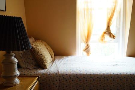 Victorian Third Floor Single - Staten Island - Talo