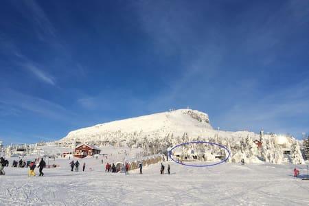 Bjørnebo i foten av Skeikampen - Svingvoll - Blockhütte