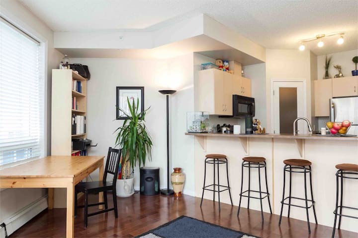 Downtown modern condo~PRIVATE room & Ensuite
