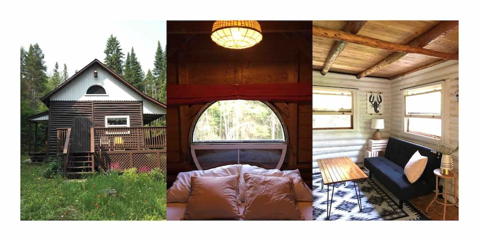 Secluded rustic mini cabin in the woods