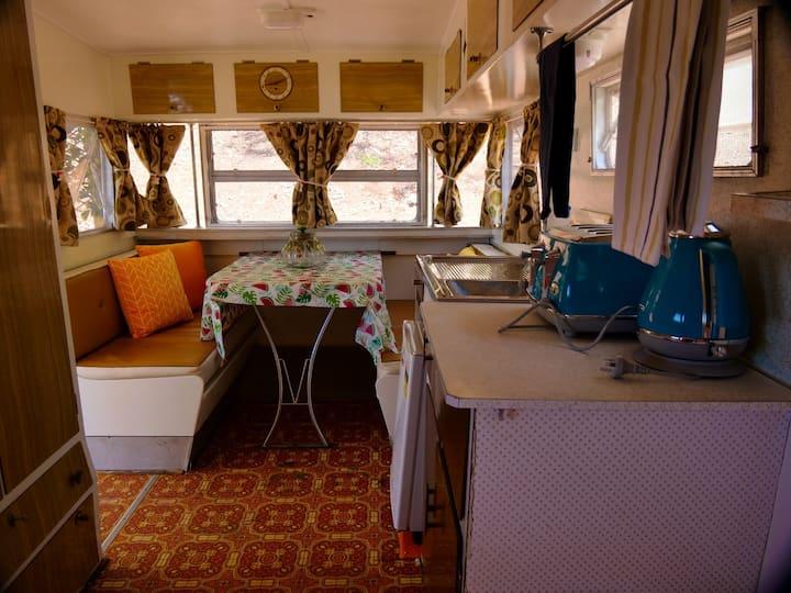 Alpaca My Bags Retro Caravan