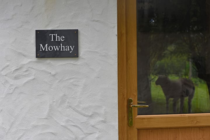 The Mowhay