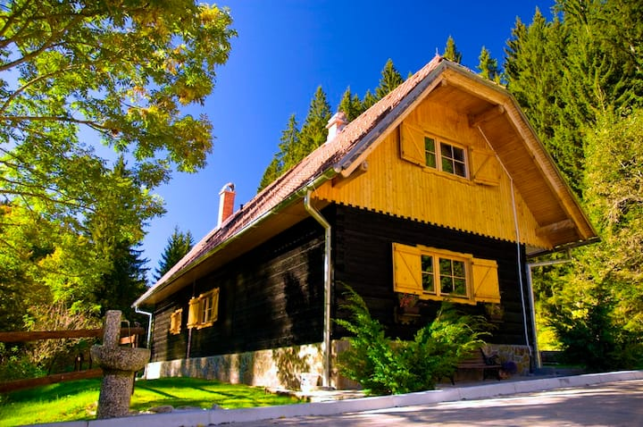 Rogla Dandi Pohorje House 1 - Authentic house