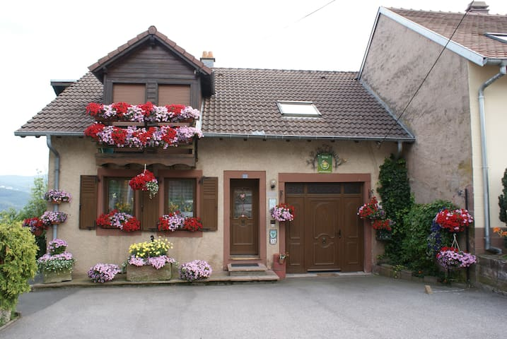 le gite fleuri - Haselbourg - Apartament