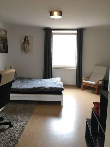 Geräumiges City-Zimmer - Freiburg im Breisgau - Apartment