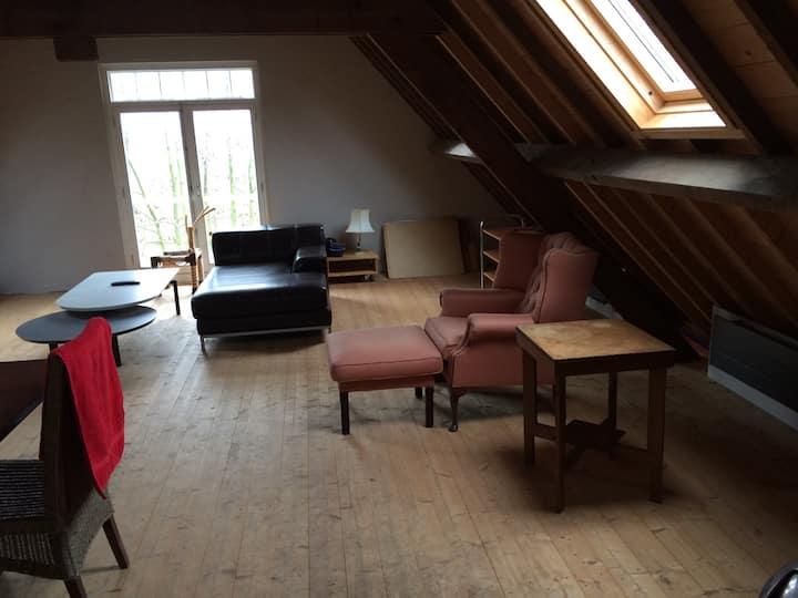 Large spacious farm/loft -apartment