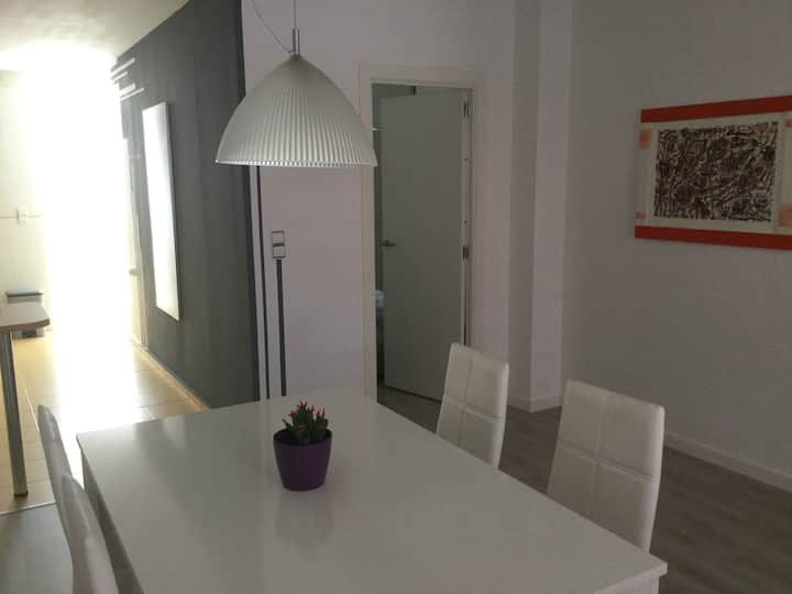 Cool loft near AVE station and historical centre