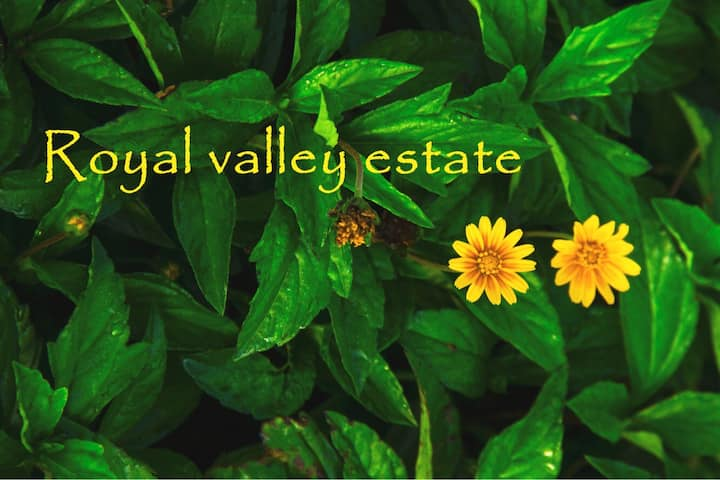 Royal Valley Estate.
