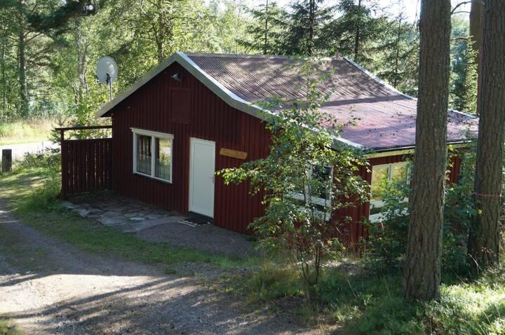 Gut(e)Zeit  Toms Hütte