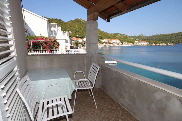 Studio flat with terrace and sea view Pasadur (Lastovo) (AS-8392-b)