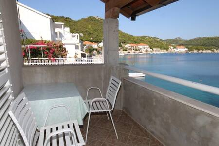 Studio flat with terrace and sea view Pasadur, Lastovo (AS-8392-b)