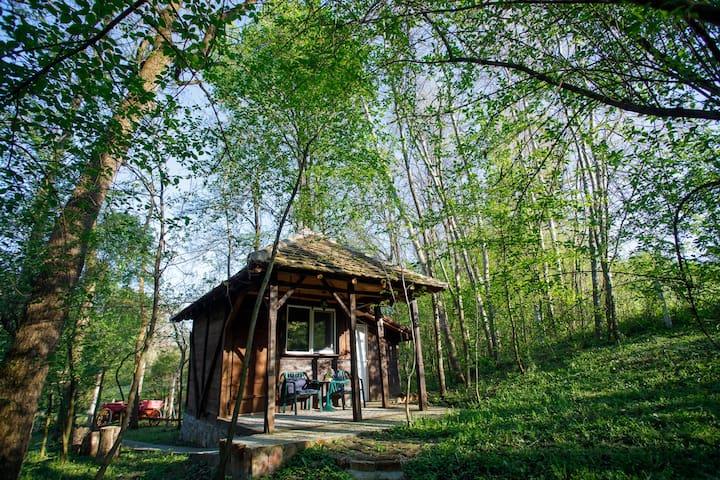 Kapetanovi Vinogradi- Forest bungalo