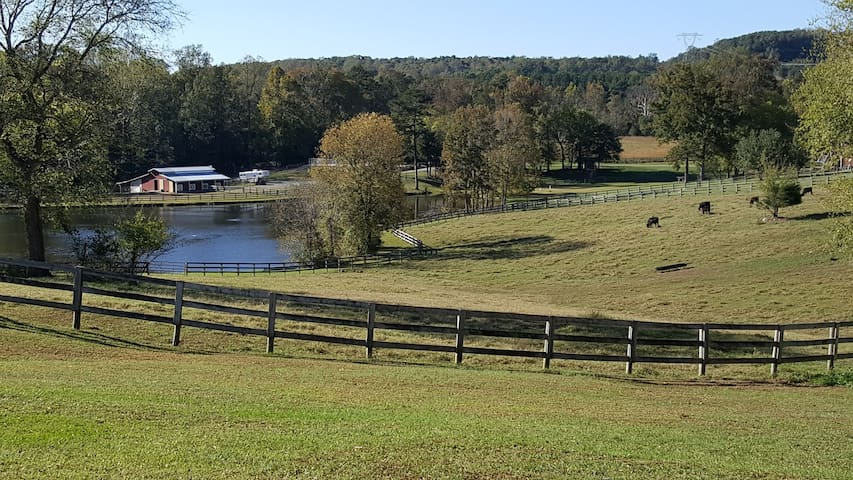 Scenic and Serene Farm House close UNC Chapel Hill - Pittsboro - Hus