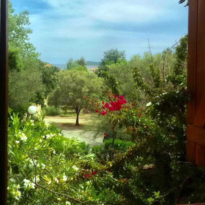 Vista giardino/mare dal soggiorno - View of the garden and sea from the living room