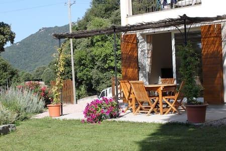 QUENZA - Alta Rocca - Location - Quenza - Casa