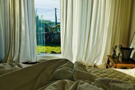 스테이 마중 - 감성독채민박 ,조용하고 아늑한 제주집을 오직 한 팀만이 머무는 공간