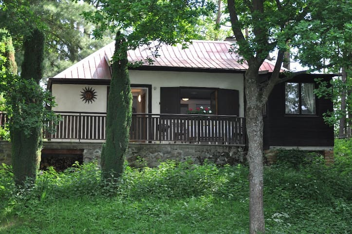 Cozy cottage right by the river Lužnice