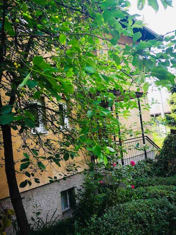 Sarajevo, remodeled, free parking, charming garden