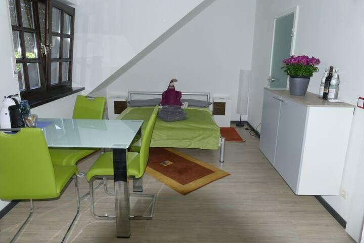 Freundliches Apartment / Ferienwohnung Bonn–Mehlem
