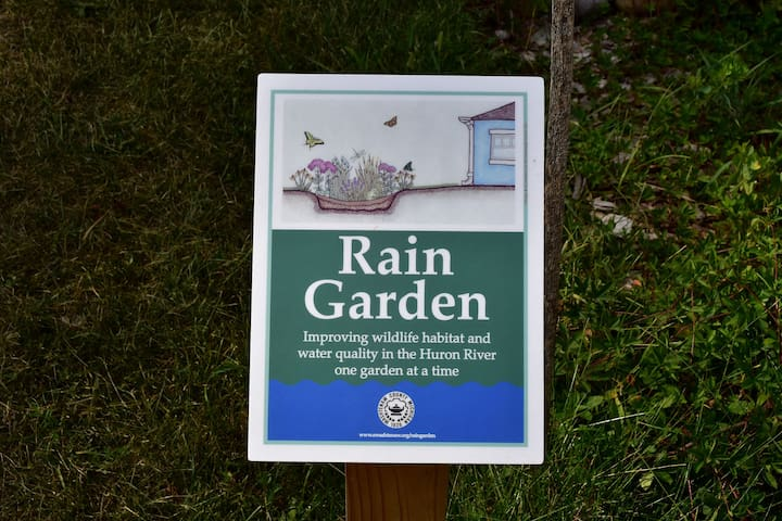 The only existing rain garden in Saline.....improving wildlife habitat and water quality in the Saline River....one garden at a time.